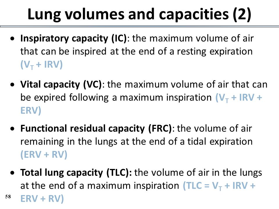 58 Lung volumes and capacities (2)  Inspiratory capacity (IC): the maximum volume of air that can be inspired at the end of a resting expiration (V T