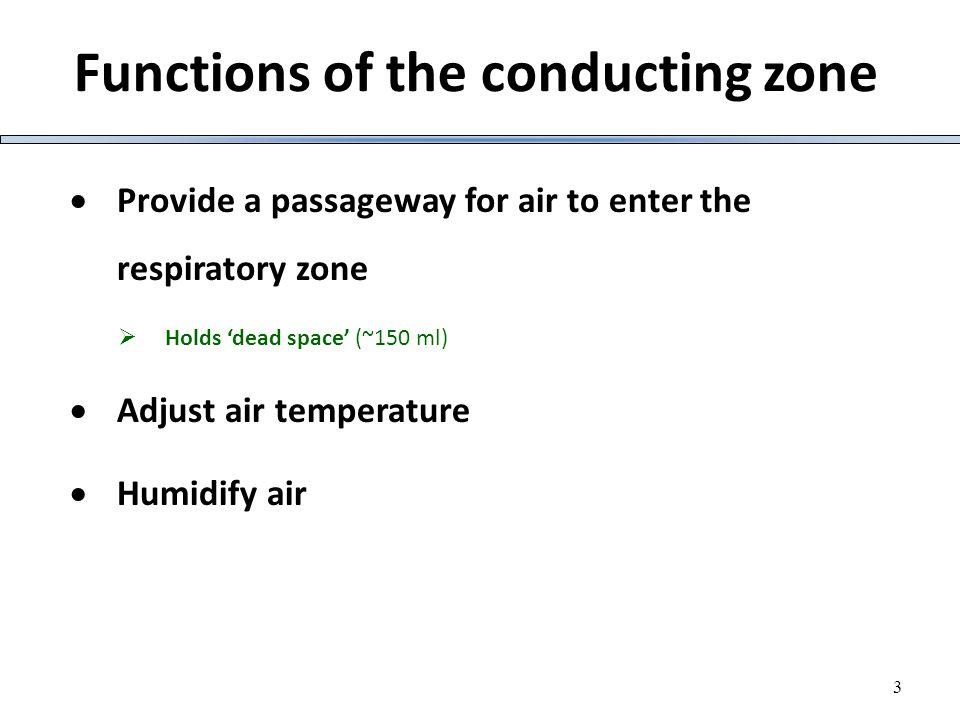 24 Spirometry measurements Fig.