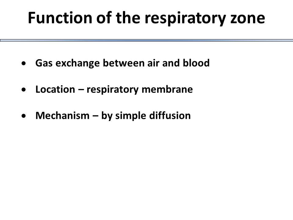 πνευμοθώρακας Συλλογή αέρα μέσα στην κοιλότητα του υπεζωκότα, με αποτέλεσμα τη σύμπτυξη του πνευμονικού παρεγχύματος και την εμπόδιση της αναπνευστικής λειτουργίας.
