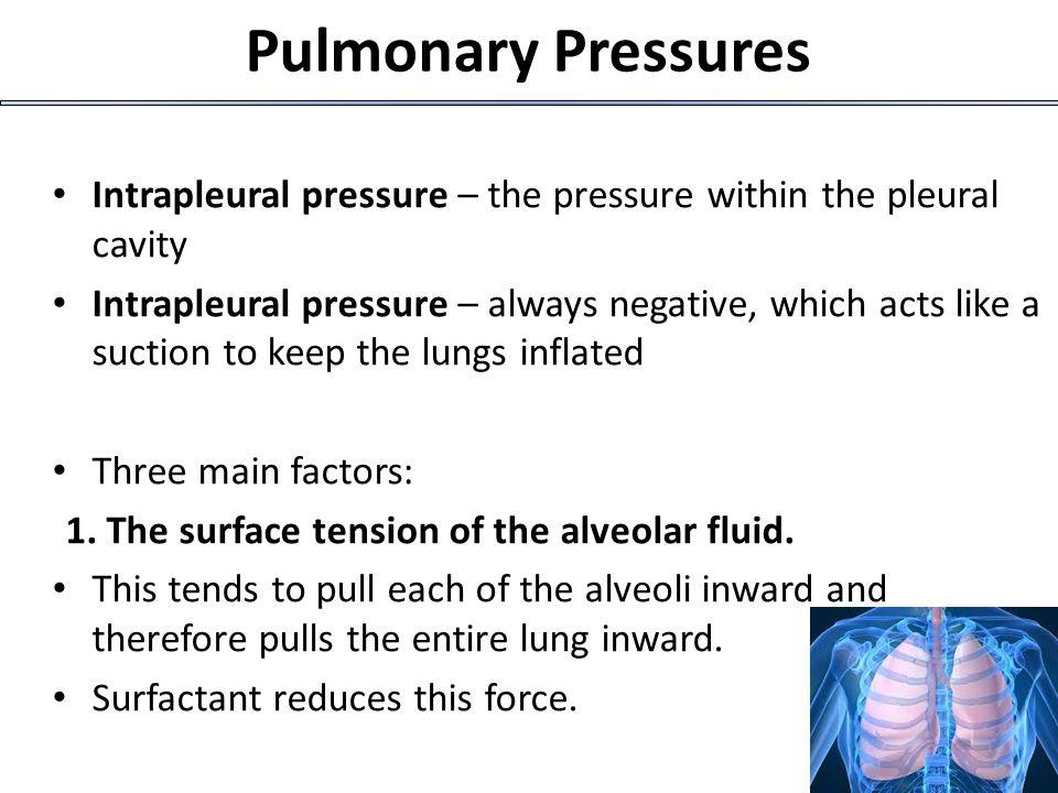 20 P atm - P alv Air flow = ————— R  Airway resistance  (eg.