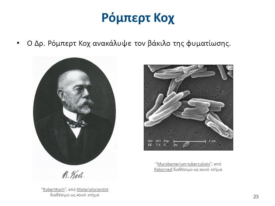 """Ρόμπερτ Κοχ Ο Δρ. Ρόμπερτ Κοχ ανακάλυψε τον βάκιλο της φυματίωσης. 23 """"RobertKoch"""", από Materialscientist διαθέσιμο ως κοινό κτήμαRobertKochMaterialsc"""