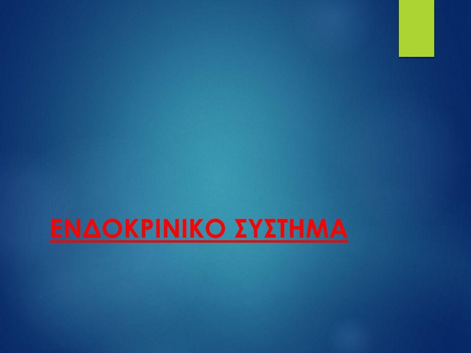 ΕΝΔΟΚΡΙΝΙΚΟ ΣΥΣΤΗΜΑ