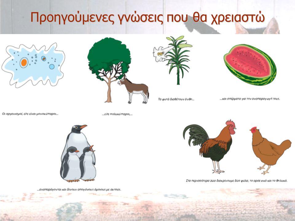 Καινούριες γνώσεις που θα αποκτήσω  Ποια είναι τα είδη της αναπαραγωγής.
