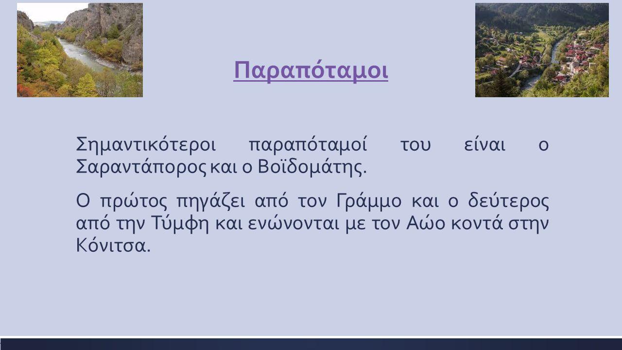 Παραπόταμοι Σημαντικότεροι παραπόταμοί του είναι ο Σαραντάπορος και ο Βοϊδομάτης. Ο πρώτος πηγάζει από τον Γράμμο και ο δεύτερος από την Τύμφη και ενώ