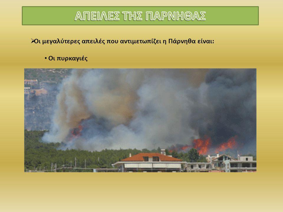  Οι μεγαλύτερες απειλές που αντιμετωπίζει η Πάρνηθα είναι: Οι πυρκαγιές