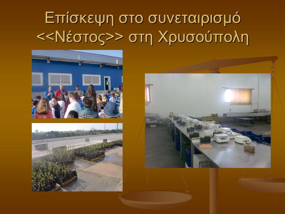 Επίσκεψη στο συνεταιρισμό > στη Χρυσούπολη