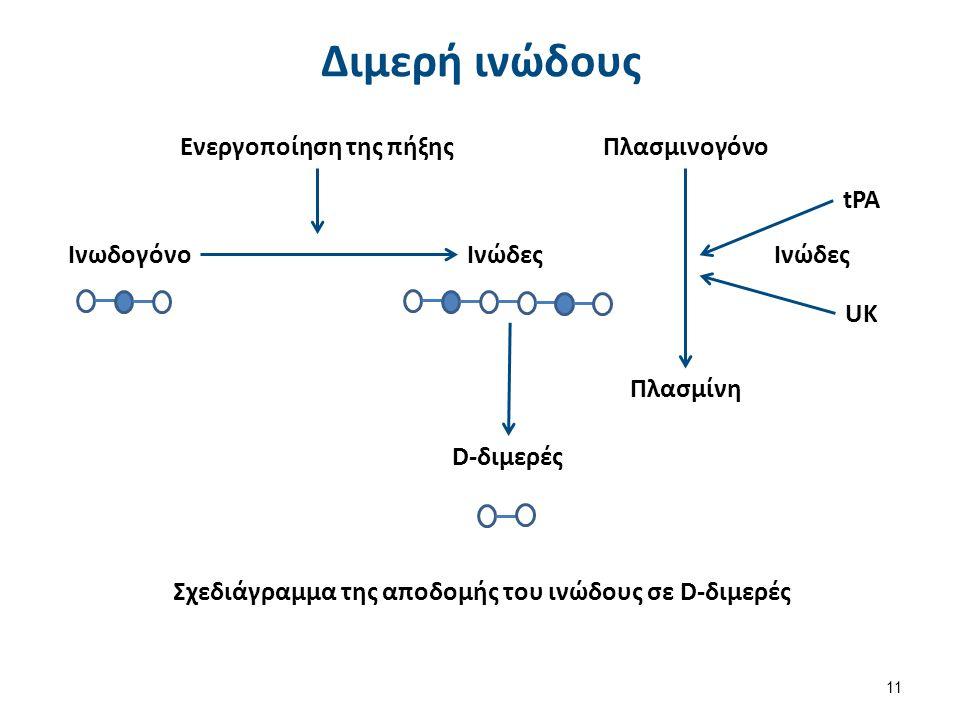 11 Διμερή ινώδους Ενεργοποίηση της πήξηςΠλασμινογόνο ΙνωδογόνοΙνώδες Πλασμίνη tPA UK Ινώδες D-διμερές Σχεδιάγραμμα της αποδομής του ινώδους σε D-διμερές