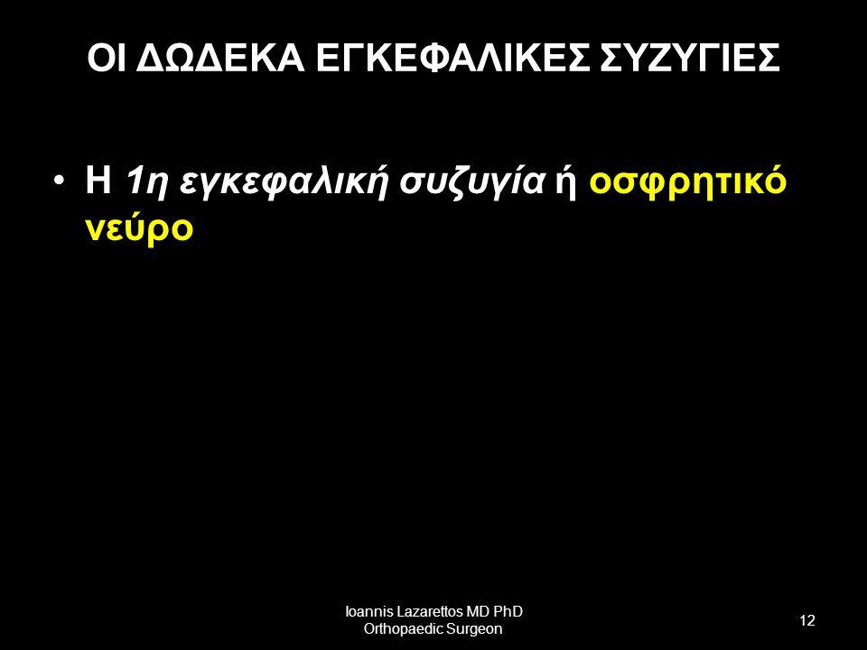 ΟΙ ΔΩΔΕΚΑ ΕΓΚΕΦΑΛΙΚΕΣ ΣΥΖΥΓΙΕΣ Η 1η εγκεφαλική συζυγία ή οσφρητικό νεύρο Ioannis Lazarettos MD PhD Orthopaedic Surgeon 12