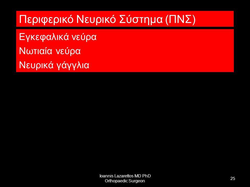 Ioannis Lazarettos MD PhD Orthopaedic Surgeon 25 Περιφερικό Νευρικό Σύστημα (ΠΝΣ) Εγκεφαλικά νεύρα Νωτιαία νεύρα Νευρικά γάγγλια
