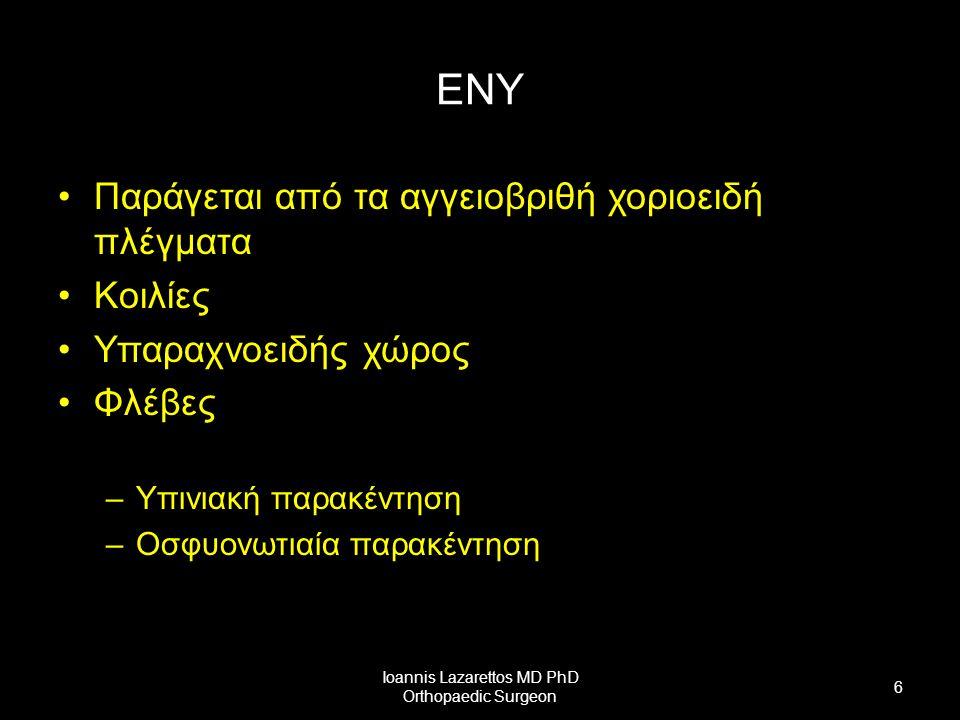 Νωτιαίος Μυελός Βρίσκεται μέσα στο σπονδυλικό σωλήνα Καταλαμβάνει τα 2/3 (Α1-Ο2) Μήκος 45 cm, Βάρος 30 gr Μυελικός κώνος Τελικό νημάτιο Πιο συμπαγής από τον εγκέφαλο Μήνιγγες 3 μοίρες: –Αυχενική –Θωρακική –Οσφυική Ioannis Lazarettos MD PhD Orthopaedic Surgeon 7