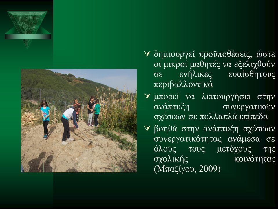  δημιουργεί προϋποθέσεις, ώστε οι μικροί μαθητές να εξελιχθούν σε ενήλικες ευαίσθητους περιβαλλοντικά  μπορεί να λειτουργήσει στην ανάπτυξη συνεργατικών σχέσεων σε πολλαπλά επίπεδα  βοηθά στην ανάπτυξη σχέσεων συνεργατικότητας ανάμεσα σε όλους τους μετόχους της σχολικής κοινότητας (Μπαζίγου, 2009)