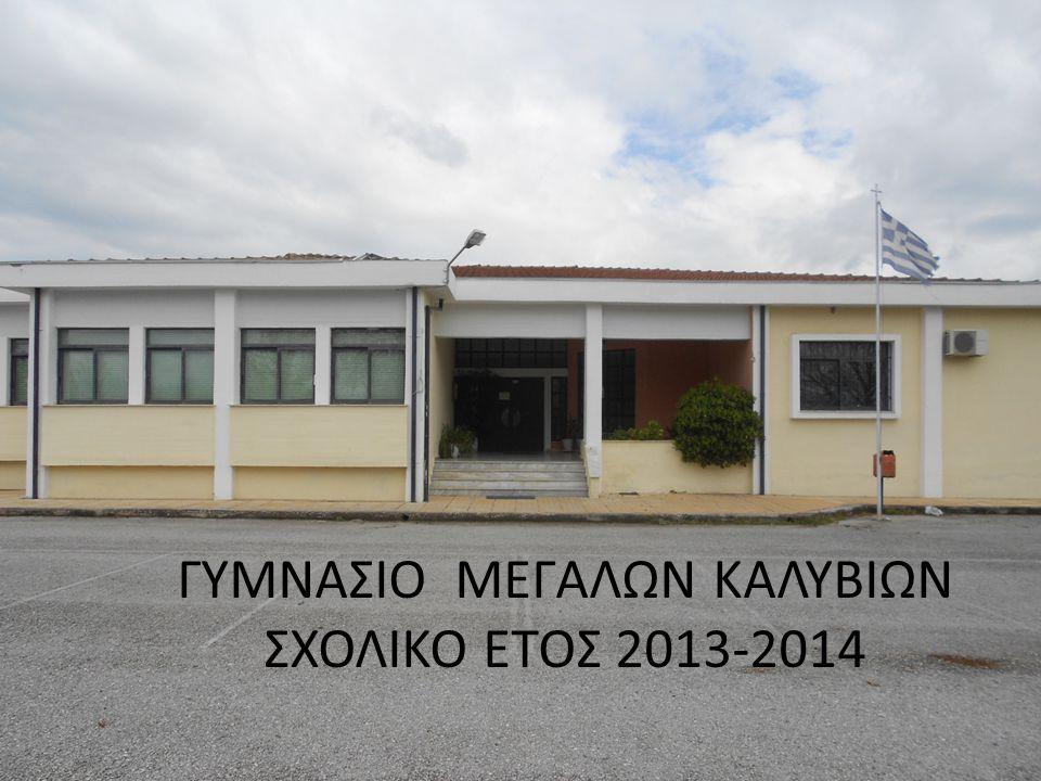 ΓΥΜΝΑΣΙΟ ΜΕΓΑΛΩΝ ΚΑΛΥΒΙΩΝ ΣΧΟΛΙΚΟ ΕΤΟΣ 2013-2014