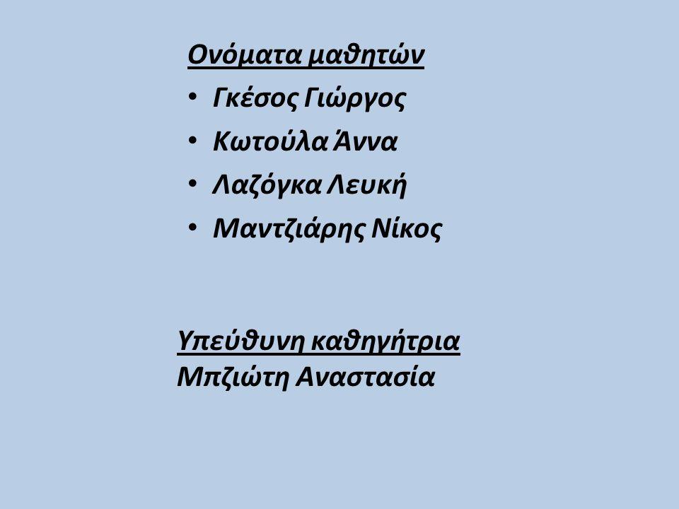 Ονόματα μαθητών Γκέσος Γιώργος Κωτούλα Άννα Λαζόγκα Λευκή Μαντζιάρης Νίκος Υπεύθυνη καθηγήτρια Μπζιώτη Αναστασία