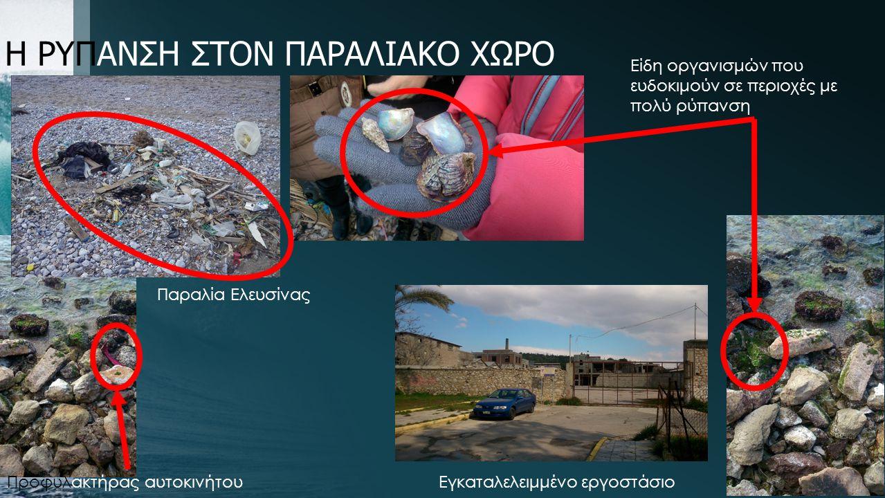 Η ΡΥΠΑΝΣΗ ΣΤΟΝ ΠΑΡΑΛΙΑΚΟ ΧΩΡΟ Προφυλακτήρας αυτοκινήτου Είδη οργανισμών που ευδοκιμούν σε περιοχές με πολύ ρύπανση Εγκαταλελειμμένο εργοστάσιο Παραλία