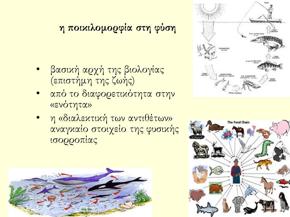 Ειδικότερα, ως «βιολογική ποικιλότητα» ορίζεται η ποικιλομορφία που εμφανίζεται σε όλα τα είδη των ζωντανών οργανισμών που εντοπίζονται μεταξύ των άλλων στα χερσαία, θαλάσσια και διάφορα άλλα υδάτινα οικοσυστήματα, καθώς και στα οικολογικά συμπλέγματα που στελεχώνονται από τους οργανισμούς αυτούς.