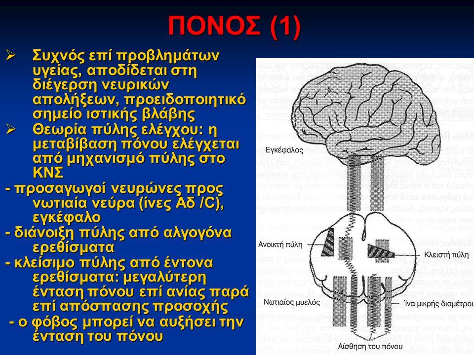 ΠΟΝΟΣ (1)  Συχνός επί προβλημάτων υγείας, αποδίδεται στη διέγερση νευρικών απολήξεων, προειδοποιητικό σημείο ιστικής βλάβης  Θεωρία πύλης ελέγχου: η μεταβίβαση πόνου ελέγχεται από μηχανισμό πύλης στο ΚΝΣ - προσαγωγοί νευρώνες προς νωτιαία νεύρα (ίνες Αδ /C), εγκέφαλο - διάνοιξη πύλης από αλγογόνα ερεθίσματα - κλείσιμο πύλης από έντονα ερεθίσματα: μεγαλύτερη ένταση πόνου επί ανίας παρά επί απόσπασης προσοχής - ο φόβος μπορεί να αυξήσει την ένταση του πόνου - ο φόβος μπορεί να αυξήσει την ένταση του πόνου