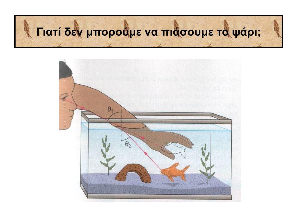 Γιατί δεν μπορούμε να πιάσουμε το ψάρι;