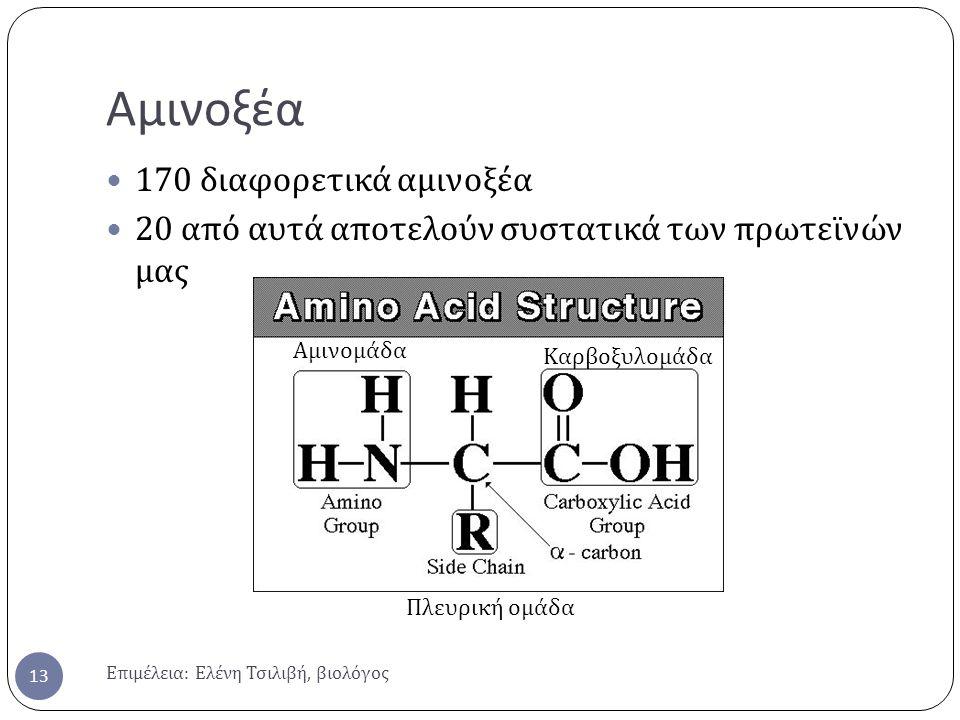 Αμινοξέα Επιμέλεια : Ελένη Τσιλιβή, βιολόγος 13 170 διαφορετικά αμινοξέα 20 από αυτά αποτελούν συστατικά των πρωτεϊνών μας Αμινομάδα Καρβοξυλομάδα Πλευρική ομάδα