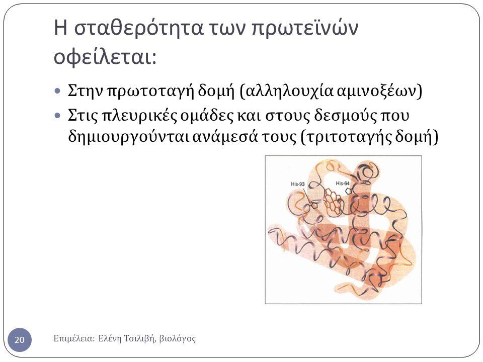 Η σταθερότητα των πρωτεϊνών οφείλεται : Επιμέλεια : Ελένη Τσιλιβή, βιολόγος 20 Στην πρωτοταγή δομή ( αλληλουχία αμινοξέων ) Στις πλευρικές ομάδες και στους δεσμούς που δημιουργούνται ανάμεσά τους ( τριτοταγής δομή )