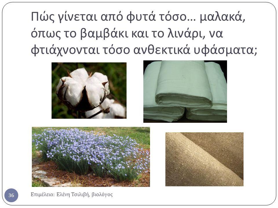 Πώς γίνεται από φυτά τόσο … μαλακά, όπως το βαμβάκι και το λινάρι, να φτιάχνονται τόσο ανθεκτικά υφάσματα ; Επιμέλεια : Ελένη Τσιλιβή, βιολόγος 36