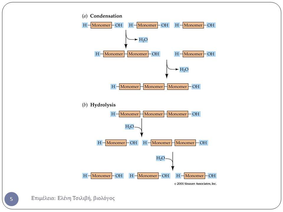 Επιμέλεια : Ελένη Τσιλιβή, βιολόγος 16 Τριτοταγής δομήΤεταρτοταγής δομή