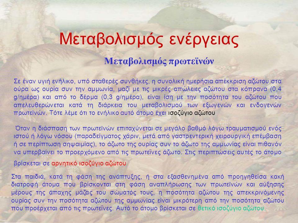 Μεταβολισμός ενέργειας Μεταβολισμός πρωτεϊνών Σε έναν υγιή ενήλικο, υπό σταθερές συνθήκες, η συνολική ημερήσια απέκκριση αζώτου στα ούρα ως ουρία συν την αμμωνία, μαζί με τις μικρές απώλειες αζώτου στα κόπρανα (0,4 g/ημέρα) και από το δέρμα (0,3 g/ημέρα), είναι ίση με την ποσότητα του αζώτου που απελευθερώνεται κατά τη διάρκεια του μεταβολισμού των εξωγενών και ενδογενών πρωτεϊνών.