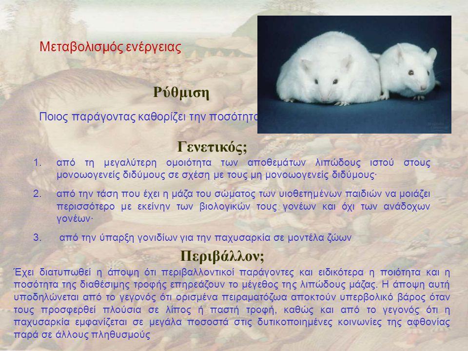 Μεταβολισμός ενέργειας Ρύθμιση Ποιος παράγοντας καθορίζει την ποσότητα ενεργειακού αποθέματος ; Γενετικός; 1.από τη μεγαλύτερη ομοιότητα των αποθεμάτων λιπώδους ιστού στους μονοωογενείς διδύμους σε σχέση με τους μη μονοωογενείς διδύμους· 2.από την τάση που έχει η μάζα του σώματος των υιοθετημένων παιδιών να μοιάζει περισσότερο με εκείνην των βιολογικών τους γονέων και όχι των ανάδοχων γονέων· 3.