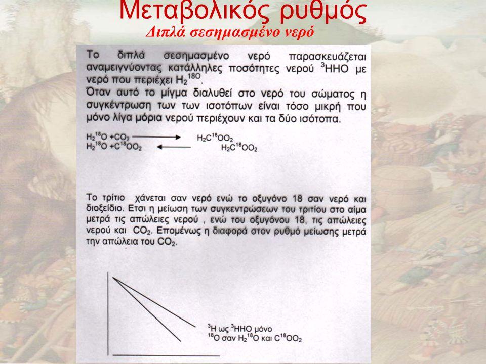 Μεταβολικός ρυθμός Διπλά σεσημασμένο νερό