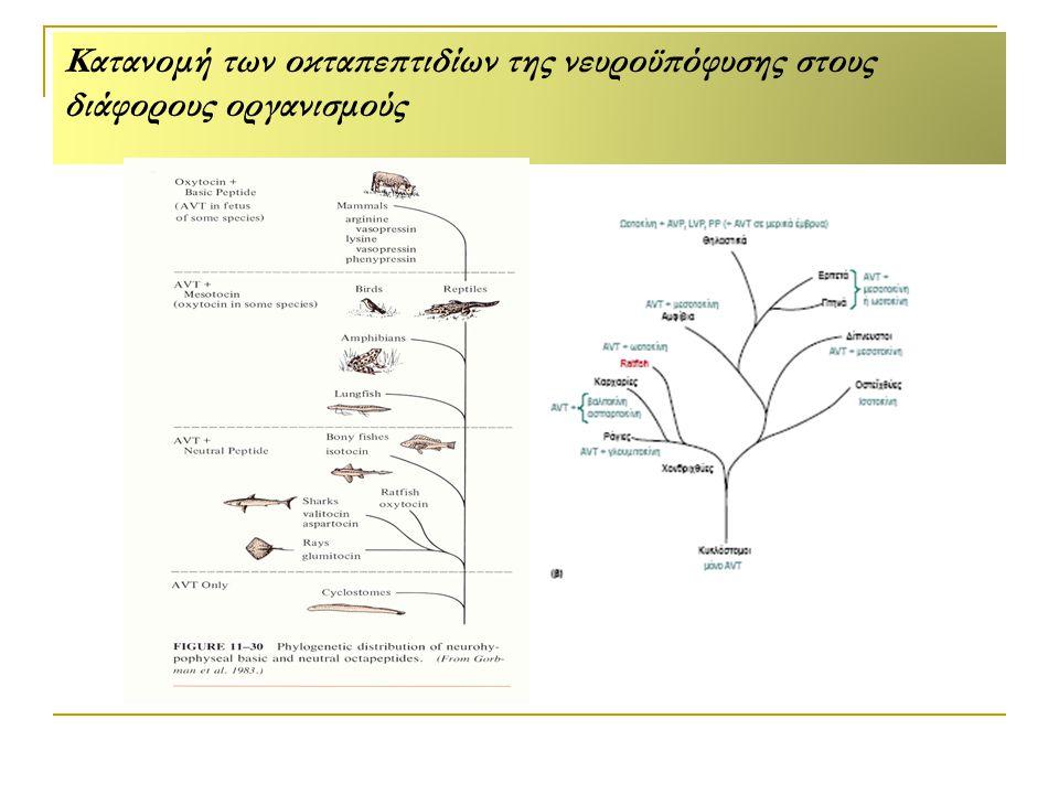 Κατανομή των οκταπεπτιδίων της νευροϋπόφυσης στους διάφορους οργανισμούς
