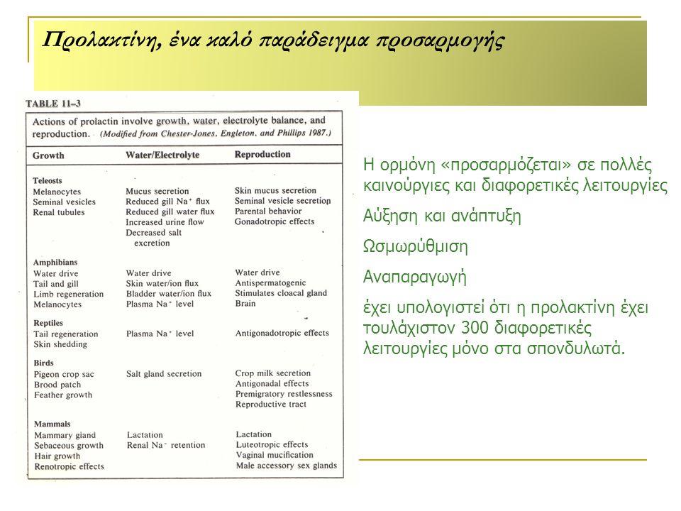 Προλακτίνη, ένα καλό παράδειγμα προσαρμογής Η ορμόνη «προσαρμόζεται» σε πολλές καινούργιες και διαφορετικές λειτουργίες Αύξηση και ανάπτυξη Ωσμωρύθμιση Αναπαραγωγή έχει υπολογιστεί ότι η προλακτίνη έχει τουλάχιστον 300 διαφορετικές λειτουργίες µόνο στα σπονδυλωτά.