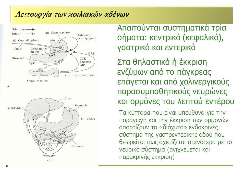 Λειτουργία των κοιλιακών αδένων Απαιτούνται συστηματικά τρία σήματα: κεντρικό (κεφαλικό), γαστρικό και εντερικό Στα θηλαστικά ή έκκριση ενζύμων από το πάγκρεας επάγεται και από χολινεργικούς παρασυμπαθητικούς νευρώνες και ορμόνες του λεπτού εντέρου Τα κύτταρα που είναι υπεύθυνα για την παραγωγή και την έκκριση των ορμονών απαρτίζουν το «διάχυτο» ενδοκρινές σύστημα της γαστρεντερικής οδού που θεωρείται πως σχετίζεται στενότερα με το νευρικό σύστημα (ανιχνεύεται και παρακρινής έκκριση)