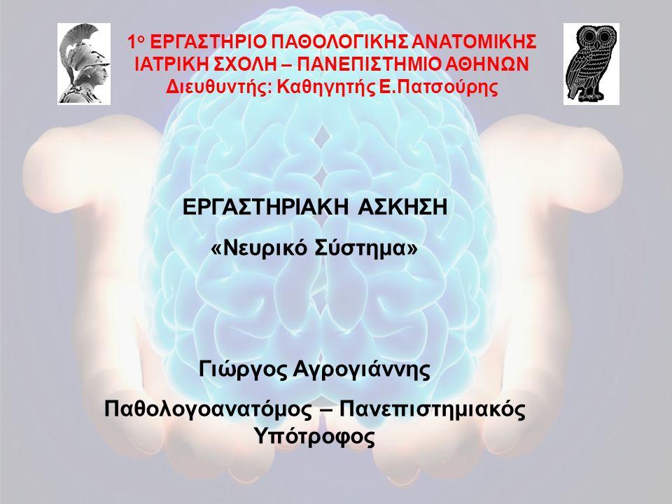 1 ο ΕΡΓΑΣΤΗΡΙΟ ΠΑΘΟΛΟΓΙΚΗΣ ΑΝΑΤΟΜΙΚΗΣ ΙΑΤΡΙΚΗ ΣΧΟΛΗ – ΠΑΝΕΠΙΣΤΗΜΙΟ ΑΘΗΝΩΝ Διευθυντής: Καθηγητής Ε.Πατσούρης ΕΡΓΑΣΤΗΡΙΑΚΗ ΑΣΚΗΣΗ «Νευρικό Σύστημα» Γιώρ