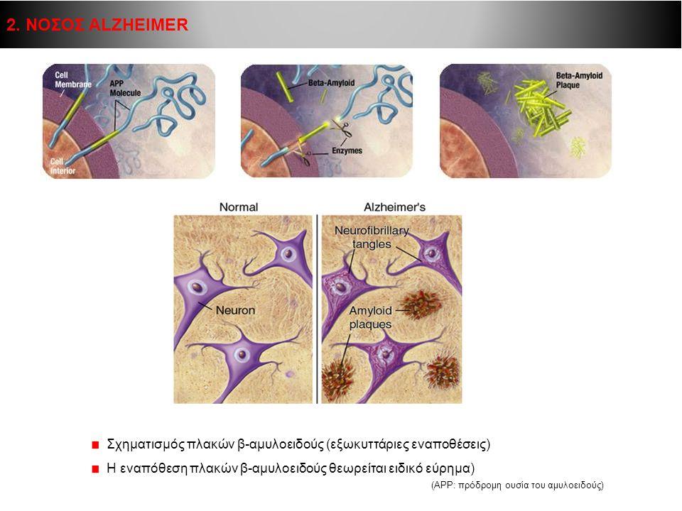 Σχηματισμός πλακών β-αμυλοειδούς (εξωκυττάριες εναποθέσεις) Η εναπόθεση πλακών β-αμυλοειδούς θεωρείται ειδικό εύρημα) (ΑPP: πρόδρομη ουσία του αμυλοει