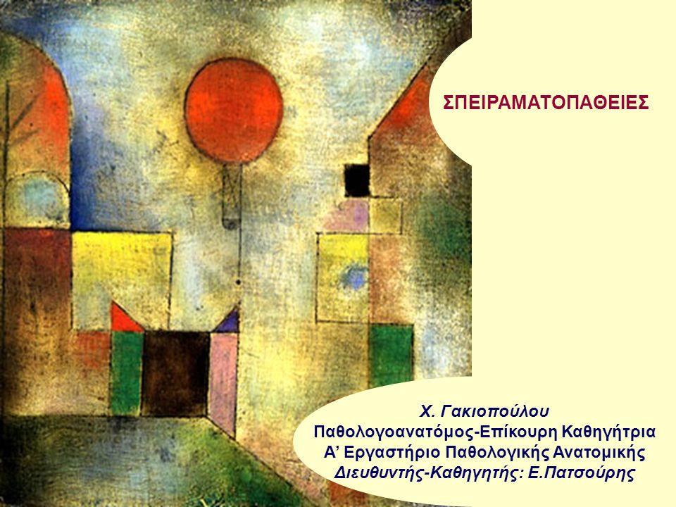 ΣΠΕΙΡΑΜΑΤOΠAΘΕΙΕΣ Χ. Γακιοπούλου Παθολογοανατόμος-Επίκουρη Καθηγήτρια Α' Εργαστήριο Παθολογικής Ανατομικής Διευθυντής-Καθηγητής: Ε.Πατσούρης