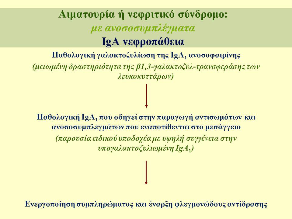 Παθολογική γαλακτοζυλίωση της IgA 1 ανοσοφαιρίνης (μειωμένη δραστηριότητα της β1,3-γαλακτοζυλ-τρανσφεράσης των λευκοκυττάρων) Παθολογική IgA 1 που οδη