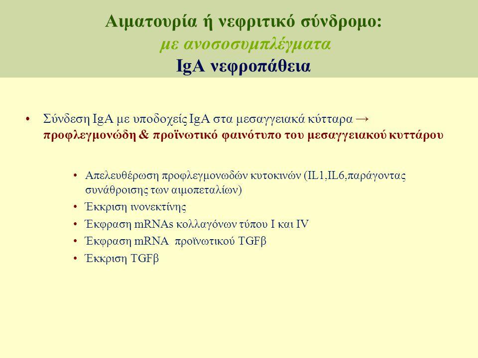 Σύνθεση IgA Κάθαρση IgA Δεξαμενή κυκλοφορούσας IgA Παθογόνος IgA Κάθαρση μεσαγγειακής IgA μεσαγγειακή εναπόθεση IgA Σπειραματικές αντιδράσεις στην εναπόθεση IgA Aπουσία Αντίδρασης ↔  ↑ μεσαγγειακής ουσίας±κυττάρων ↔ Μηνοειδική ΣΝ Ασυμπτωματική Μακροσκοπική αιματουρία και πρωτεϊνουρία Οξεία ή ταχέως εξελισσόμενηΣΝ Προοδευτική χρόνια ΣΝ Συστηματικό διαμέρισμα IgA βλεννογονικό διαμέρισμα IgA