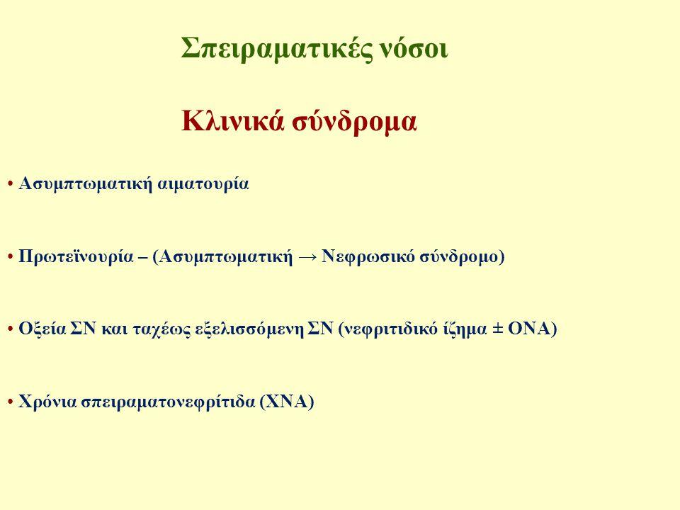 Σπειραματικές νόσοι - Κλινικά σύνδρομα Ασυμπτωματική αιματουρία Mικροσκοπική ανίχνευση αίματος(>3ερυθρά/κοπ) σε 2/3 δείγματα ούρων Προϋπόθεση: σπειραματικής προέλευσης (δύσμορφα ερυθρά) ± Υποτροπιάζοντα επεισόδια μακροσκοπικής αιματουρίας & Φυσιολογική σπειραματική διήθηση