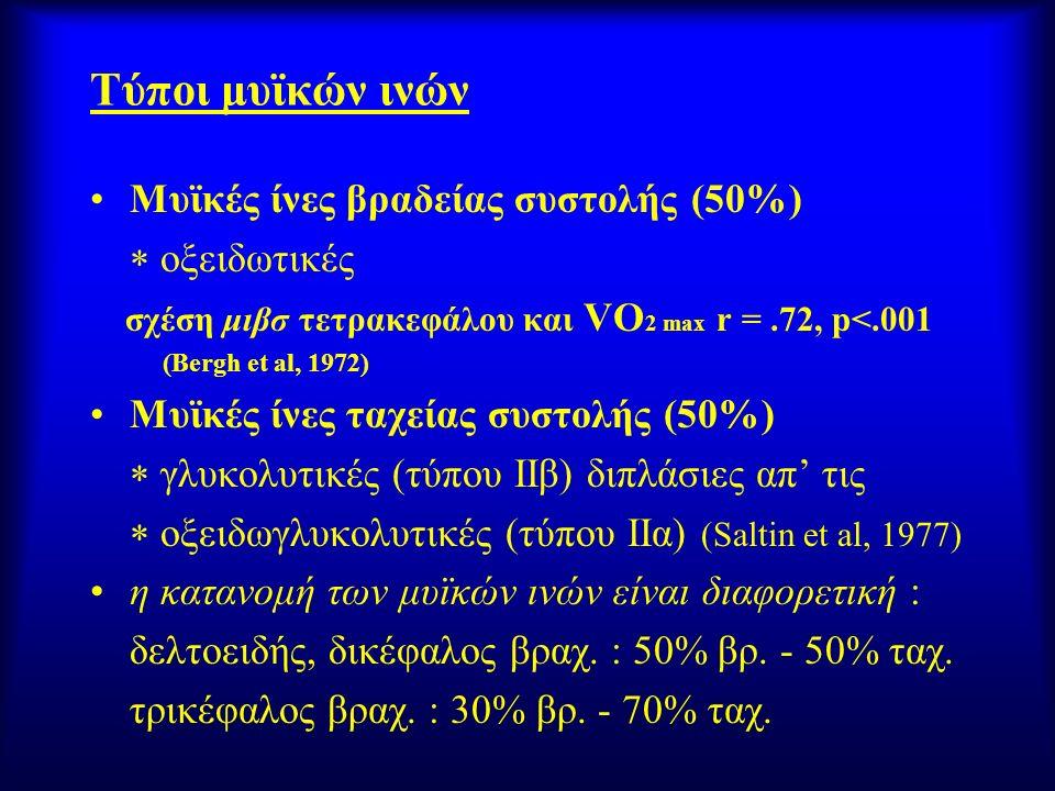 Τύποι μυϊκών ινών Μυϊκές ίνες βραδείας συστολής (50%)  οξειδωτικές σχέση μιβσ τετρακεφάλου και VO 2 max r =.72, p<.001 (Bergh et al, 1972) Μυϊκές ίνε