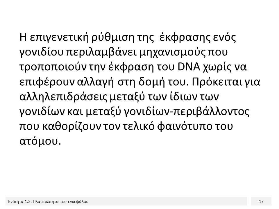 Ενότητα 1.3: Πλαστικότητα του εγκεφάλου-17- Η επιγενετική ρύθμιση της έκφρασης ενός γονιδίου περιλαμβάνει μηχανισμούς που τροποποιούν την έκφραση του