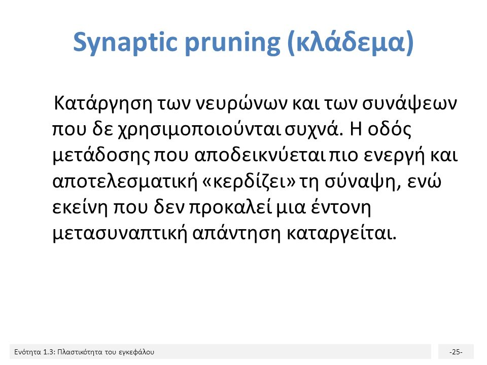 Ενότητα 1.3: Πλαστικότητα του εγκεφάλου-25- Synaptic pruning (κλάδεμα) Κατάργηση των νευρώνων και των συνάψεων που δε χρησιμοποιούνται συχνά. Η οδός μ