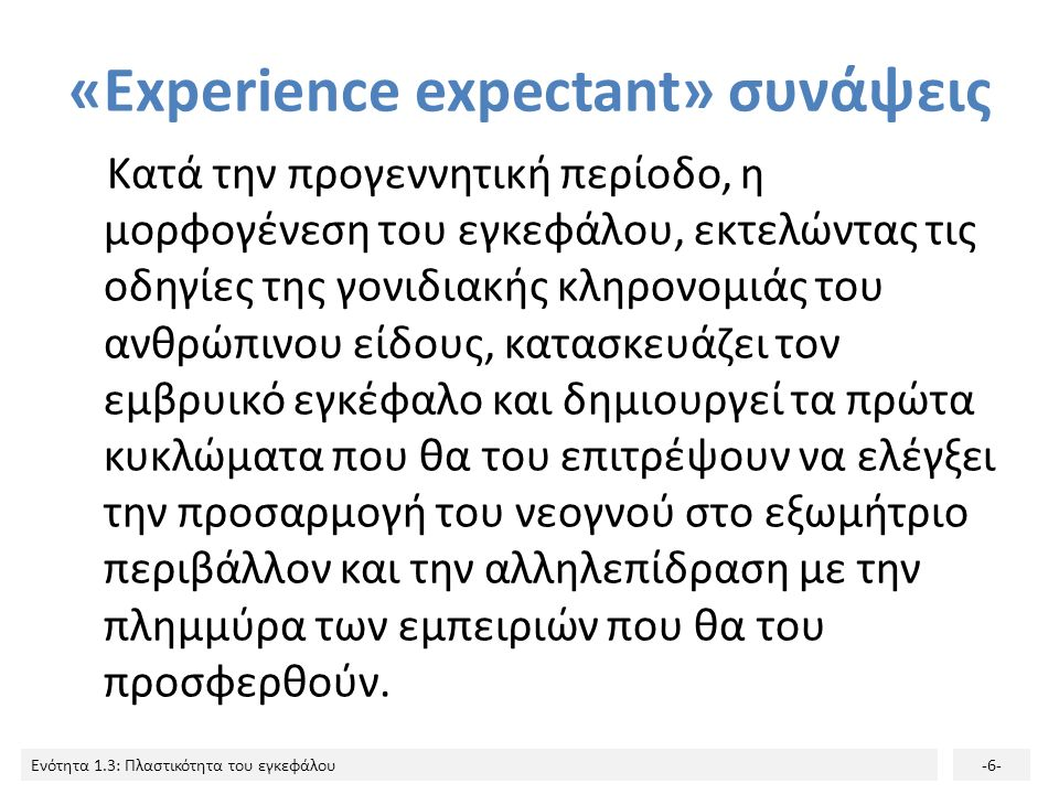 Ενότητα 1.3: Πλαστικότητα του εγκεφάλου-6- «Εxperience expectant» συνάψεις Κατά την προγεννητική περίοδο, η μορφογένεση του εγκεφάλου, εκτελώντας τις