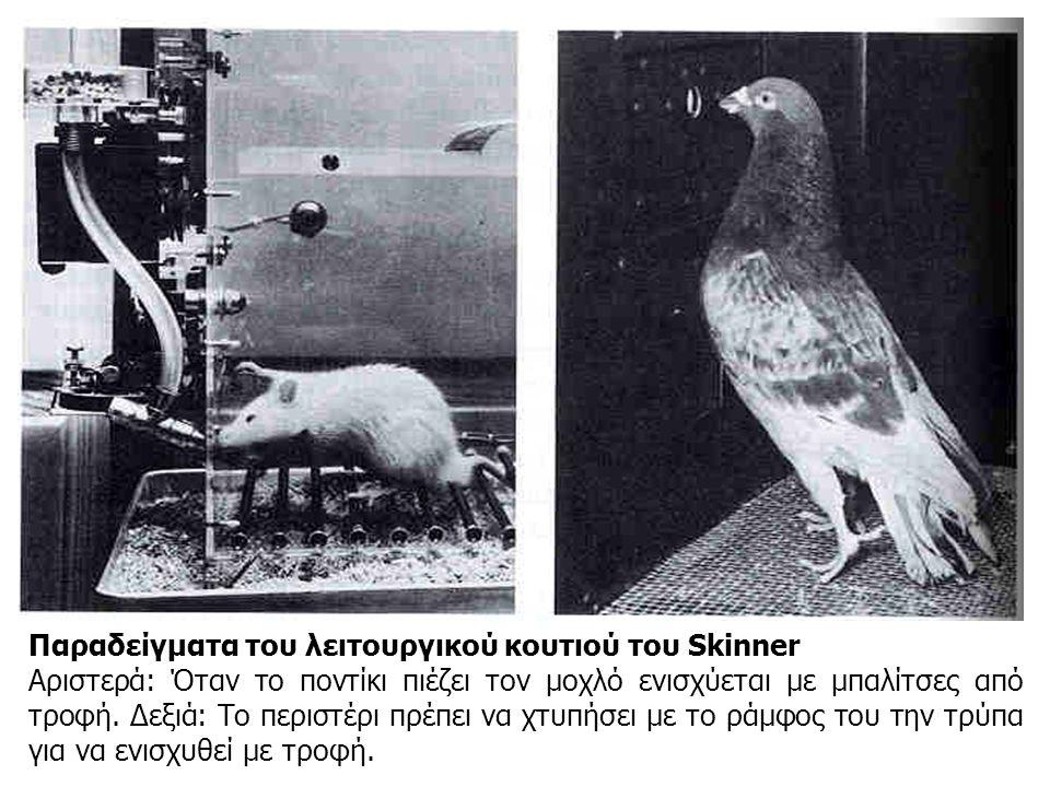 Παραδείγματα του λειτουργικού κουτιού του Skinner Αριστερά: Όταν το ποντίκι πιέζει τον μοχλό ενισχύεται με μπαλίτσες από τροφή. Δεξιά: Το περιστέρι πρ