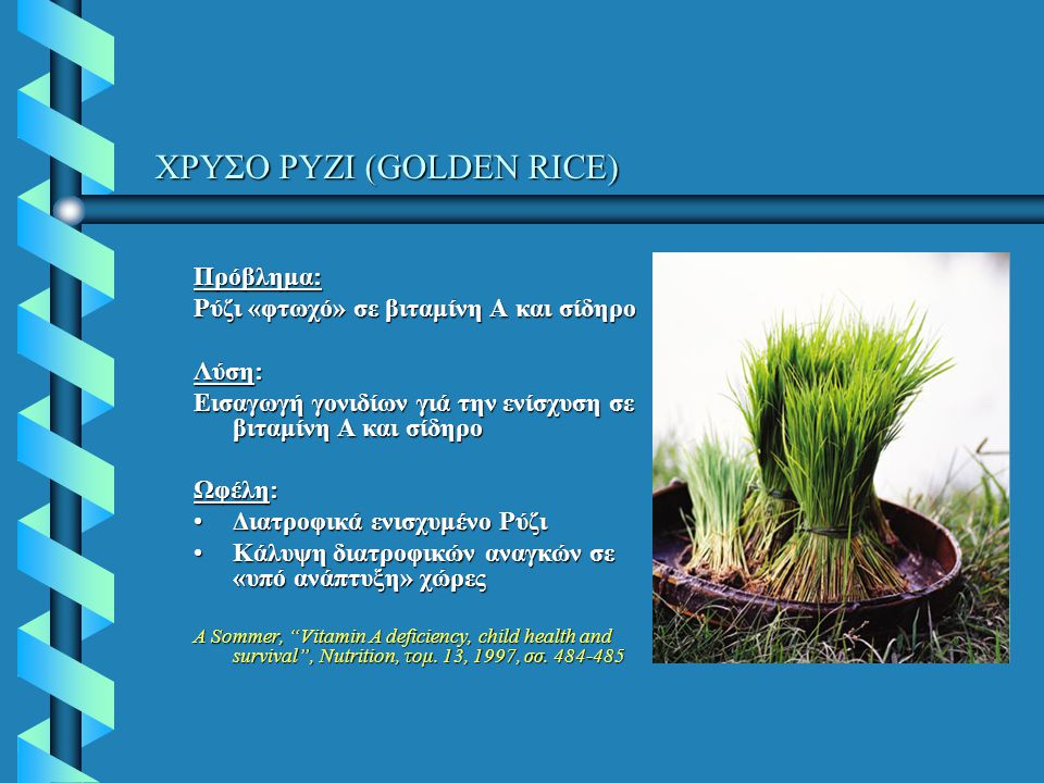 ΧΡΥΣΟ ΡΥΖΙ (GOLDEN RICE) ΧΡΥΣΟ ΡΥΖΙ (GOLDEN RICE) Πρόβλημα: Ρύζι «φτωχό» σε βιταμίνη Α και σίδηρο Λύση: Εισαγωγή γονιδίων γιά την ενίσχυση σε βιταμίνη Α και σίδηρο Ωφέλη: Διατροφικά ενισχυμένο ΡύζιΔιατροφικά ενισχυμένο Ρύζι Κάλυψη διατροφικών αναγκών σε «υπό ανάπτυξη» χώρεςΚάλυψη διατροφικών αναγκών σε «υπό ανάπτυξη» χώρες A Sommer, Vitamin A deficiency, child health and survival , Nutrition, τομ.