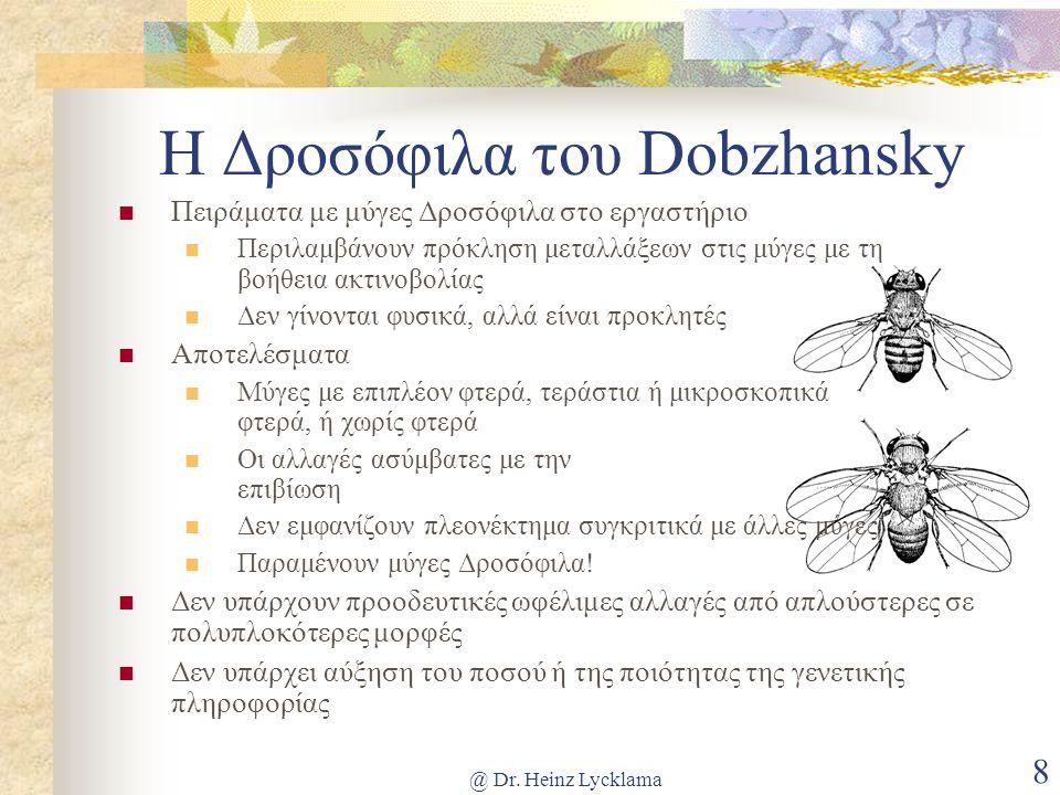 @ Dr. Heinz Lycklama 8 Η Δροσόφιλα του Dobzhansky Πειράματα με μύγες Δροσόφιλα στο εργαστήριο Περιλαμβάνουν πρόκληση μεταλλάξεων στις μύγες με τη βοήθ