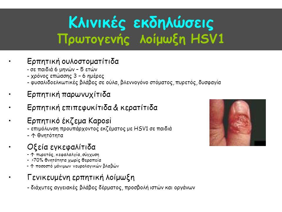 Κλινικές εκδηλώσεις Πρωτογενής λοίμωξη HSV1 Ερπητική ουλοστοματίτιδα - σε παιδιά 6 μηνών – 5 ετών - χρόνος επώασης 3 – 6 ημέρες - φυσαλιδοελκωτικές βλ