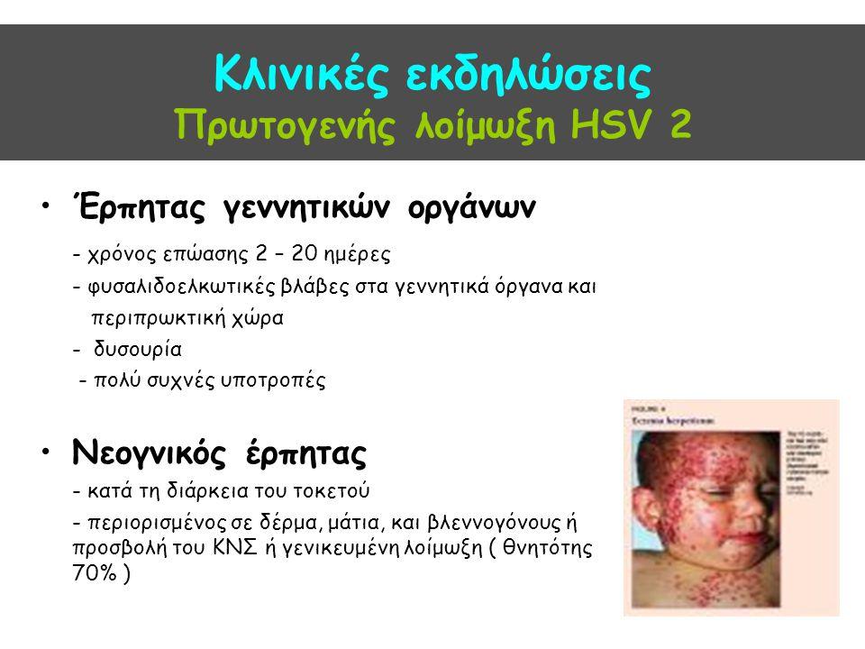 Κλινικές εκδηλώσεις Πρωτογενής λοίμωξη HSV 2 Έρπητας γεννητικών οργάνων - χρόνος επώασης 2 – 20 ημέρες - φυσαλιδοελκωτικές βλάβες στα γεννητικά όργανα