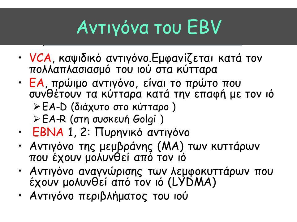 Aντιγόνα του EBV VCA, καψιδικό αντιγόνο.Εμφανίζεται κατά τον πολλαπλασιασμό του ιού στα κύτταρα ΕΑ, πρώιμο αντιγόνο, είναι το πρώτο που συνθέτουν τα κ