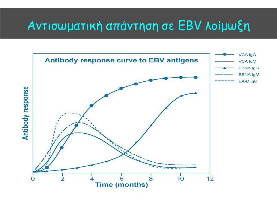 Αντισωματική απάντηση σε EBV λοίμωξη
