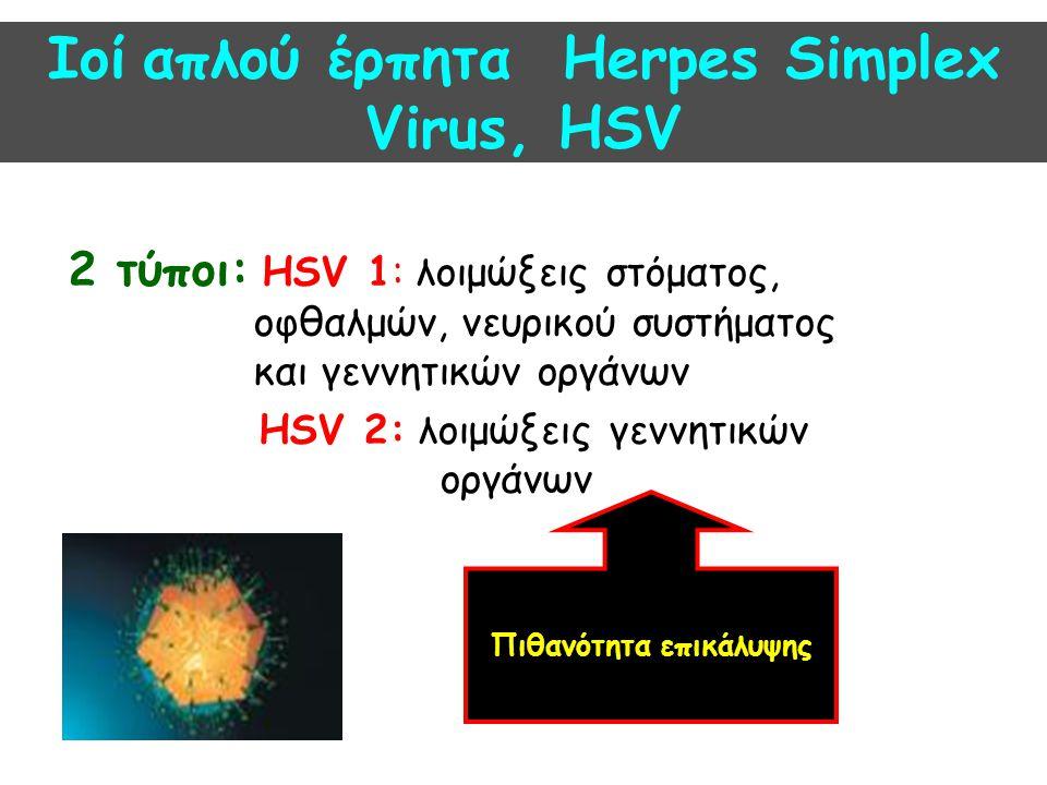 Τρόπος μετάδοσης-Επιδημιολογία HSV 1 : - Άμεση επαφή με βλεννογόνους - Πρώτη λοίμωξη στην παιδική ηλικία - 70-90% των εφήβων θετικά αντισώματα HSV 2 : - Σεξουαλική επαφή - Έκρηξη κατά την εφηβεία, με την έναρξη της σεξουαλικής δραστηριότητας