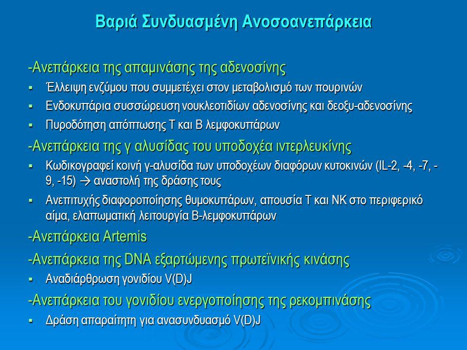 Βαριά Συνδυασμένη Ανοσοανεπάρκεια -Ανεπάρκεια της απαμινάσης της αδενοσίνης  Έλλειψη ενζύμου που συμμετέχει στον μεταβολισμό των πουρινών  Ενδοκυττά